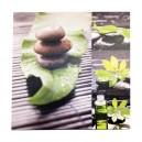 Canvas stenen met planten