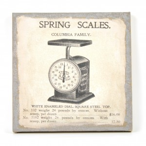 Canvas spring scales