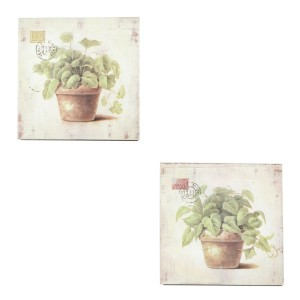 Houten kaders basilicum/munt